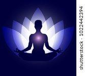 human body in yoga lotus asana. ...   Shutterstock .eps vector #1022442394