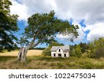 derelict house and old tree in... | Shutterstock . vector #1022475034