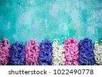 Hyacinth Flowers On Concrete...