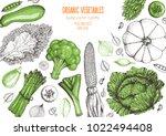 vegetables top view frame.... | Shutterstock .eps vector #1022494408