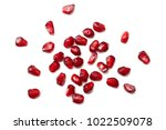 pomegranate seeds isolated on... | Shutterstock . vector #1022509078