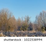 winter morning with frosted... | Shutterstock . vector #1022538994
