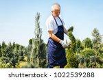 gardener trimming coniferous...   Shutterstock . vector #1022539288