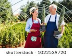 senior couple of gardeners... | Shutterstock . vector #1022539720