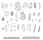 vector set of vegetative... | Shutterstock .eps vector #1022547016
