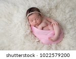 sleeping  ten day old newborn... | Shutterstock . vector #1022579200