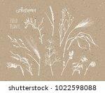 autumn field plants  ears of... | Shutterstock .eps vector #1022598088
