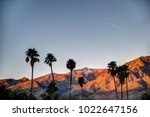 palm springs mountains at... | Shutterstock . vector #1022647156