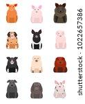 various breeds of pigs   Shutterstock .eps vector #1022657386