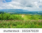 mountain view with flower... | Shutterstock . vector #1022670220