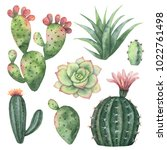 watercolor set of cacti and... | Shutterstock . vector #1022761498