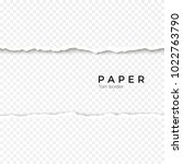 horizontal seamless torn paper... | Shutterstock . vector #1022763790