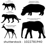 collection of silhouettes of... | Shutterstock .eps vector #1022781940