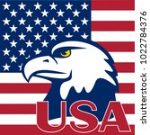 eagle is located on a flag of... | Shutterstock . vector #1022784376