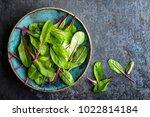 fresh mangold leaves  swiss... | Shutterstock . vector #1022814184