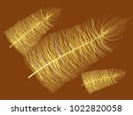 feathers floating. beautiful... | Shutterstock .eps vector #1022820058