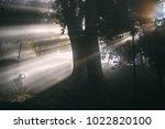 traveler man lost in the misty... | Shutterstock . vector #1022820100