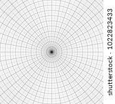polar graph paper. vtctor... | Shutterstock .eps vector #1022823433