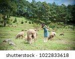 asian beautiful woman are a... | Shutterstock . vector #1022833618