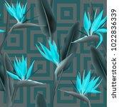 bird of paradise tropical... | Shutterstock .eps vector #1022836339