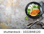 chicken breast or fillet ... | Shutterstock . vector #1022848120