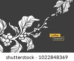 vector template of coffee tree... | Shutterstock .eps vector #1022848369