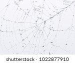 france  langeais  2017   toile... | Shutterstock . vector #1022877910