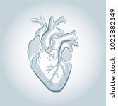 illustrated human heart | Shutterstock .eps vector #1022882149