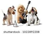 three dogs musicians watercolor ... | Shutterstock . vector #1022892208