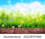 spring background with flowers... | Shutterstock . vector #1022957440