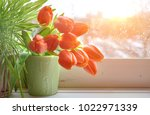 spring background with green... | Shutterstock . vector #1022971339
