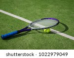 paddle tennis court and ball   Shutterstock . vector #1022979049