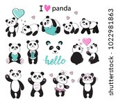 beautiful pandas collection on... | Shutterstock .eps vector #1022981863