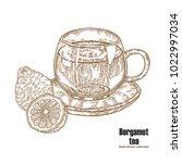 bergamot fruits and cup of tea... | Shutterstock .eps vector #1022997034