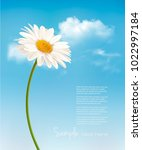 beautiful white daisy in front... | Shutterstock .eps vector #1022997184