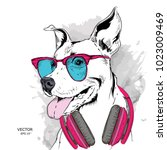 dog in glasses and headphones.... | Shutterstock .eps vector #1023009469