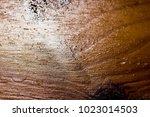 wood detail background | Shutterstock . vector #1023014503