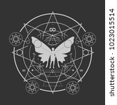 mystery  witchcraft  occult and ... | Shutterstock .eps vector #1023015514