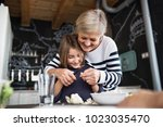 a small girl with grandmother... | Shutterstock . vector #1023035470