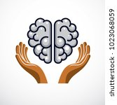 human anatomical brain with... | Shutterstock .eps vector #1023068059