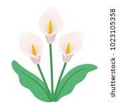Calla Lily Flower Bouquet....