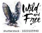 owl watercolor birds animals... | Shutterstock . vector #1023105940