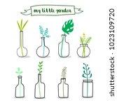 flowers in glass bottles.... | Shutterstock .eps vector #1023109720