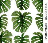 watercolor seamless pattern...   Shutterstock . vector #1023116416