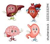 cartoon illustration of a liver ... | Shutterstock .eps vector #1023133294