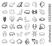 wildlife icons. set of 36... | Shutterstock .eps vector #1023200080