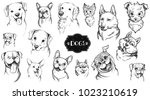Stock vector dog face hand drawn set vector animal illustration isolated on white 1023210619