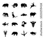 wildlife icons. set of 16... | Shutterstock .eps vector #1023255418