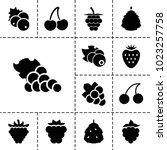 berry icons. set of 13 editable ... | Shutterstock .eps vector #1023257758