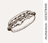 hot dog sketch. hand drawn... | Shutterstock .eps vector #1023278440